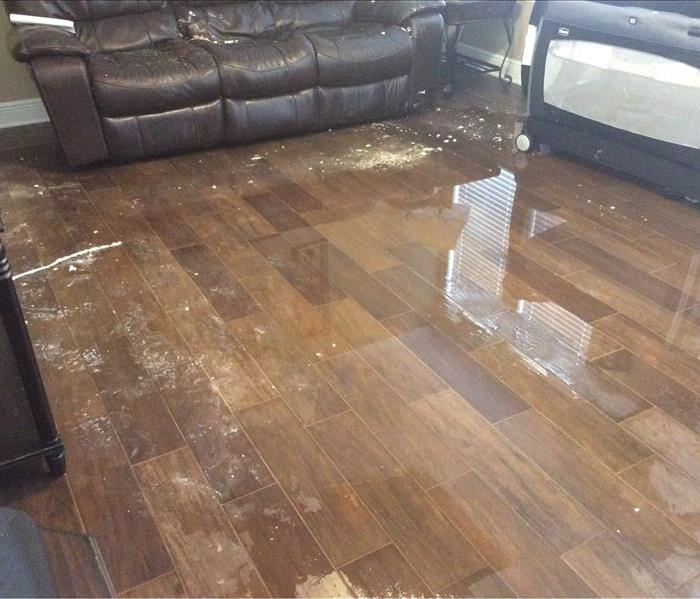 Water Damage in Your Home?