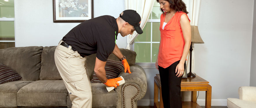 Sugar Land, TX carpet upholstery cleaning